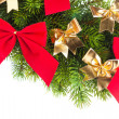 Branch of Christmas tree with ribbon - Stok fotoraf