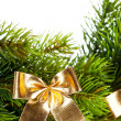 Branch of Christmas tree with ribbon — Stock Photo #4495881