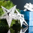 Branch of Christmas tree with gift box and star — Stock Photo