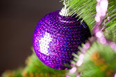 Branch of Christmas tree with festive ball — Stok fotoğraf