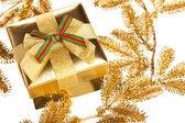 Větve vánočního stromu s dárkový box — Stock fotografie