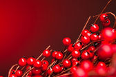 European holly on red background (shallow DOF) — Stock Photo