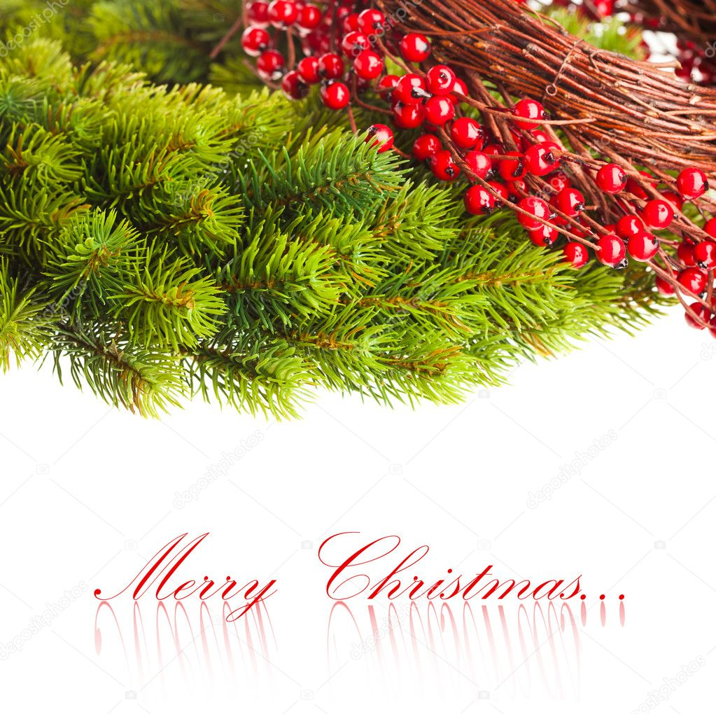 Branch of Christmas tree and european holly  — Foto de Stock   #4495618