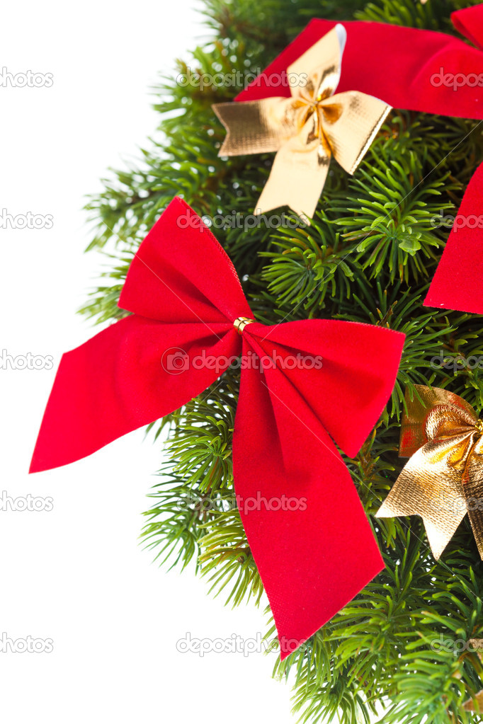 Branch of Christmas tree with ribbon  Stock Photo #4495873
