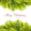 Branch of Christmas tree on white — Foto de stock #4505765