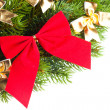 Branch of Christmas tree with ribbon — Stock Photo #4506027