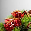 Branch of Christmas tree with gift box - Foto Stock