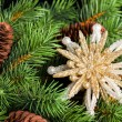 Branch of Christmas tree with snowflake — Foto de Stock