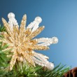 Branch of Christmas tree with snowflake — Stock Photo