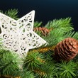 Branch of Christmas tree with star - Stock Photo