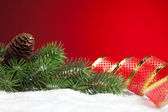 Branch of Christmas tree with bow — Stockfoto