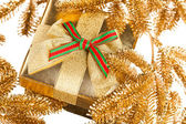 Branch of Christmas tree with gift box — Stock fotografie