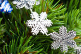 Branch of Christmas tree with snowflake — Stock fotografie