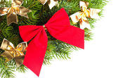 Branch of Christmas tree with ribbon — Stock fotografie