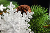 Branch of Christmas tree with snowflake — 图库照片