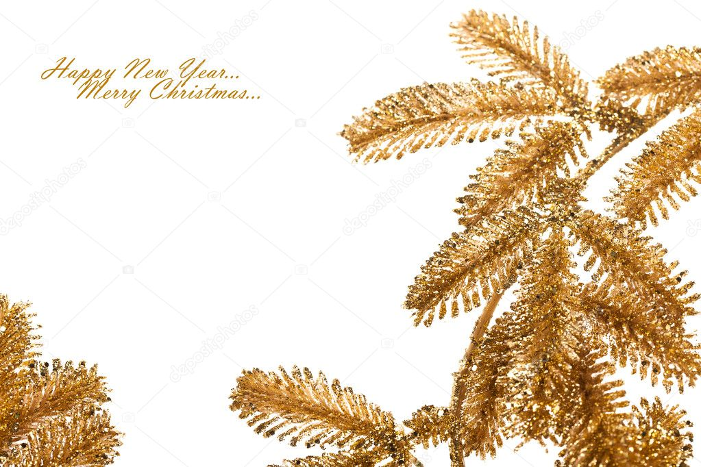 Branch of Christmas tree on white — Stock Photo #4505902