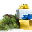 Branch of Christmas tree with gift boxes — Stock Photo