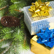Branch of Christmas tree with gift boxes — Stock Photo #4574467