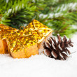 Branch of Christmas tree with pinecone and gift boxes — ストック写真 #4574488