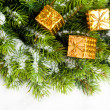 Branch of Christmas tree with gift boxes — Stock Photo #4574491