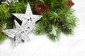 Branch of Christmas tree with stars — Foto Stock