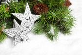 Větev stromu vánoční s hvězdičkami — Stock fotografie