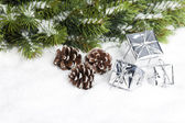 Branch of Christmas tree with gift boxes — Stockfoto