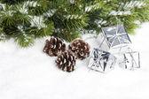 Rama del árbol de navidad con las cajas de regalo — Foto de Stock