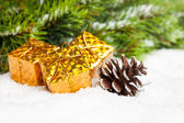 Branch of Christmas tree with pinecone and gift boxes — Stok fotoğraf