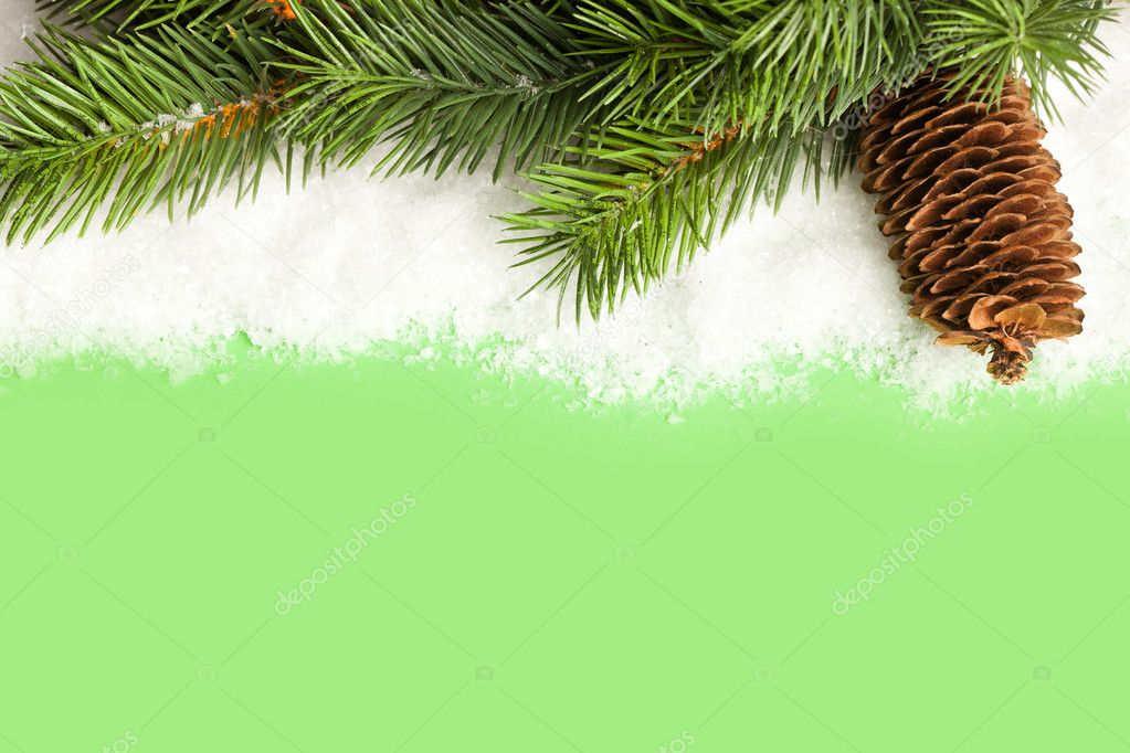 Branch of Christmas tree with pinecone — Stock Photo #4574422