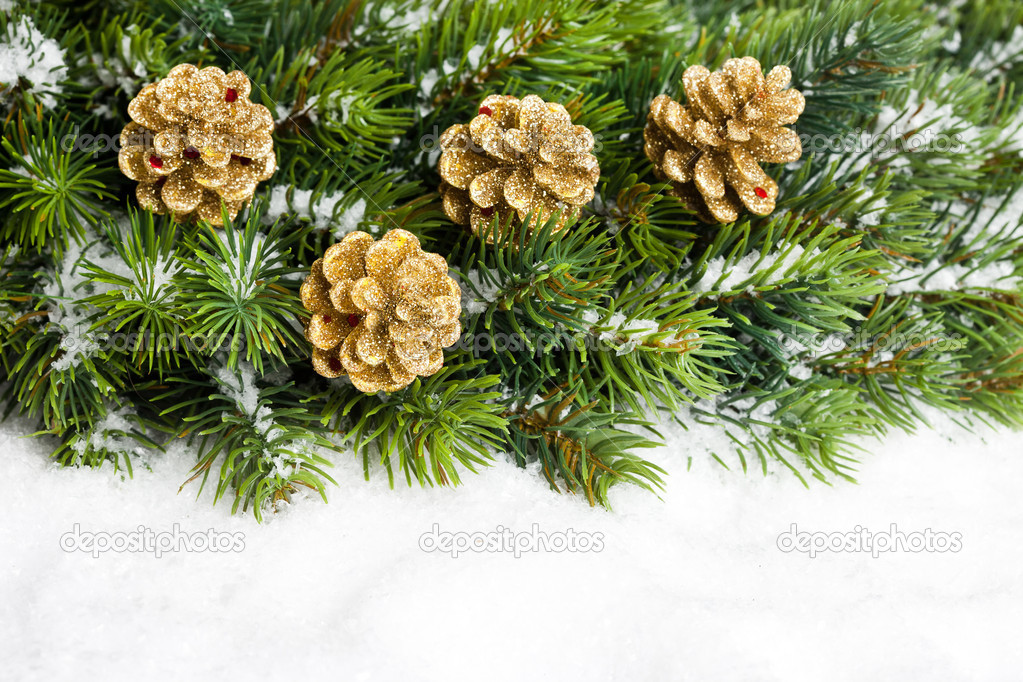 Branch of Christmas tree with pinecone — Stock Photo #4574484