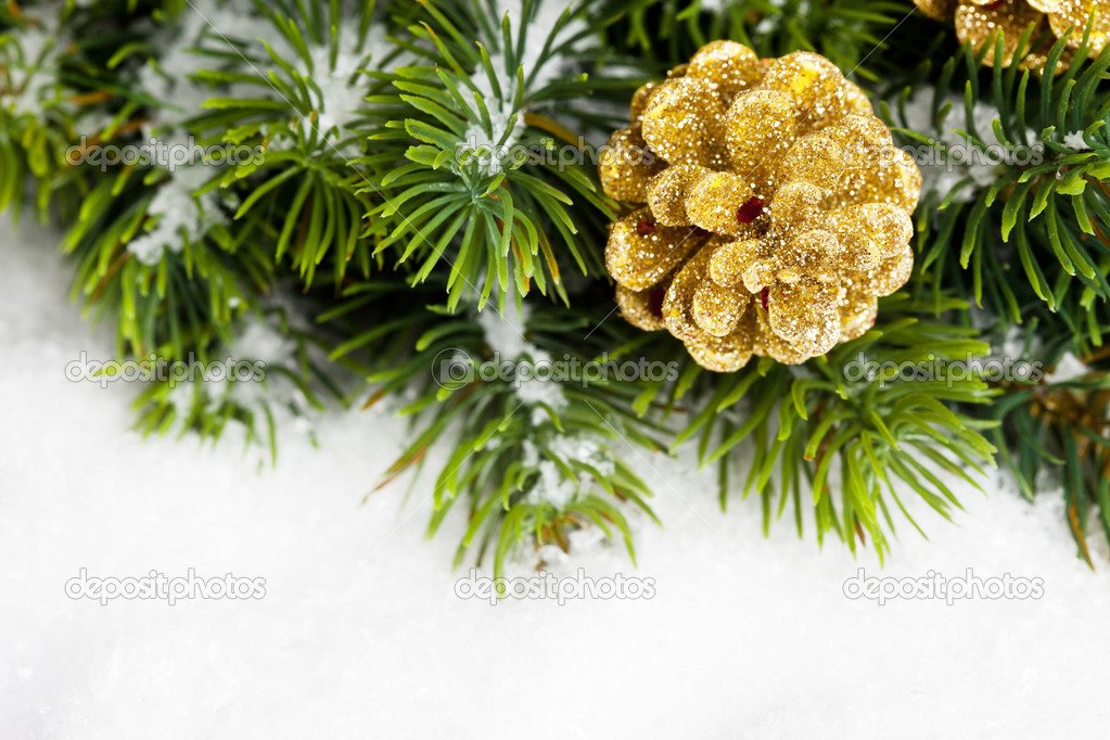 Branch of Christmas tree with pinecone — Stock Photo #4574485