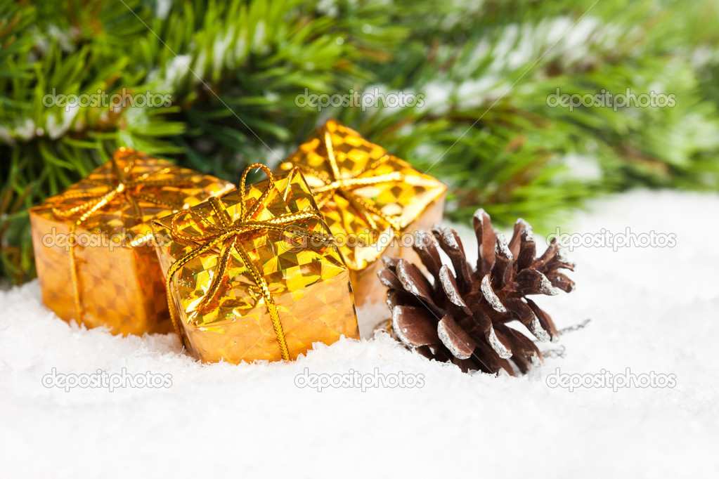 Branch of Christmas tree with pinecone and gift boxes — Stock Photo #4574488