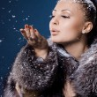 Beautiful woman in a fur coat — Stock Photo #5104602