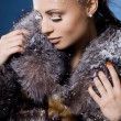 Beautiful woman in a fur coat - Stok fotoraf