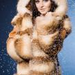 Beautiful womin fur coat — Stock Photo #5104772