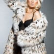 Stock Photo: Elegant fashionable womin fur