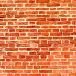 Closeup of brick wall — Stock Photo #4242880