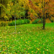 Beautiful autumn park - Stock Photo