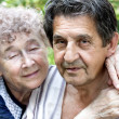 Actual gladness of elderly hugging — Stock Photo #5274736