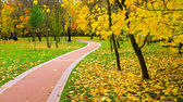 Beautiful autumn park — Stock Photo