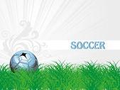 Tuin achtergrond met geïsoleerde voetbal — Stockvector
