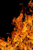 Fire isolated over black background — Stock Photo
