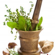 Mortar with herbs isolated — Stock Photo #4514081