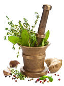 Mortar with herbs isolated — Stock Photo