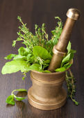 Copper mortar with herbs — Stock Photo
