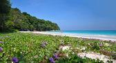 Paradise Beach at Ta chai Island — Stock Photo