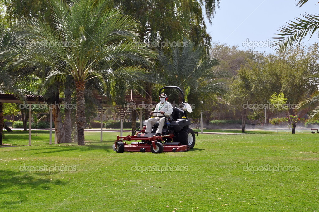 Worker on a riding lawn mower cutting the grass. Zoo in Al Ain. UAE — Stock Photo #4895914