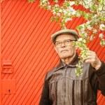 Elderly man in his garden — Stock Photo