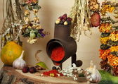 Handmill, spice and dry flowers — Stock Photo